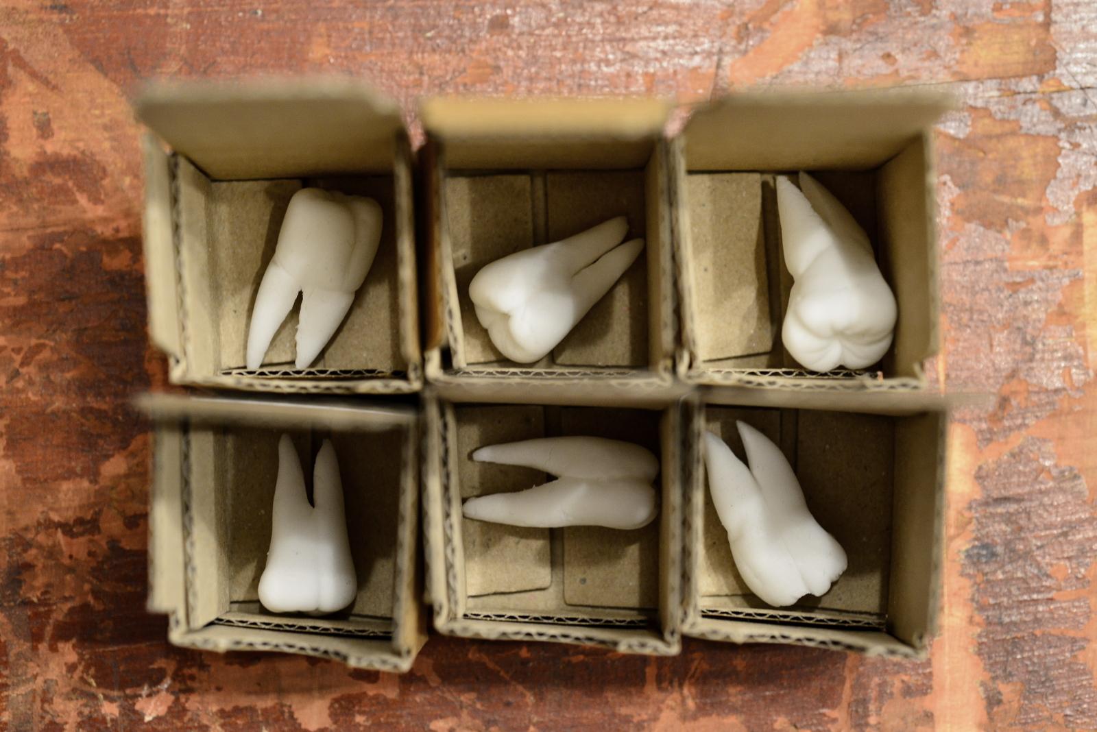 Sweet Tooth (2) Photo Paul Singer (lo-res).JPG