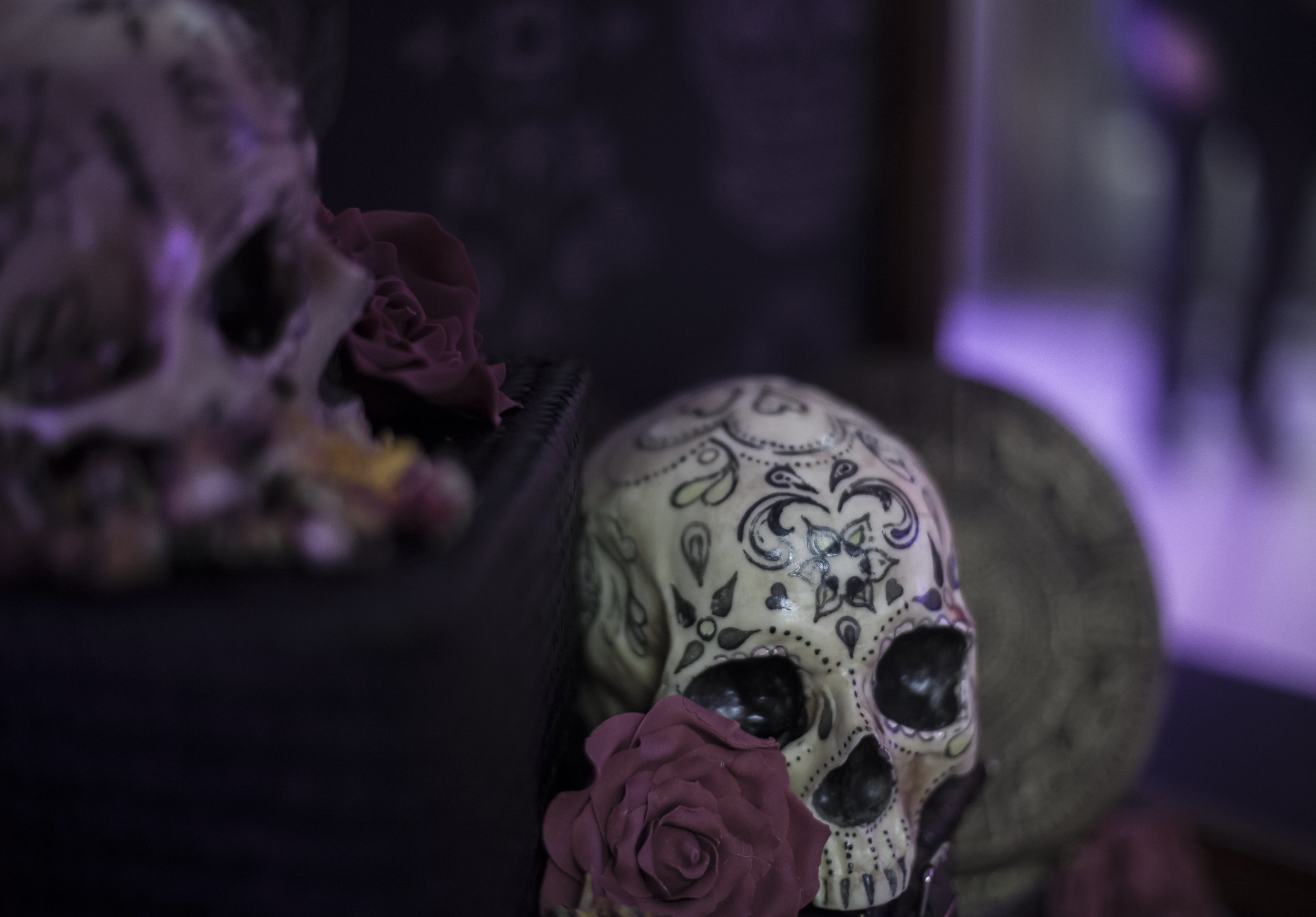 1-The Calavera Cabinet - AVM Curiosities in collaboration with Conjurer's Kitchen and Anatomy Boutique - Photo Reme Campos (4) hi-res.jpg
