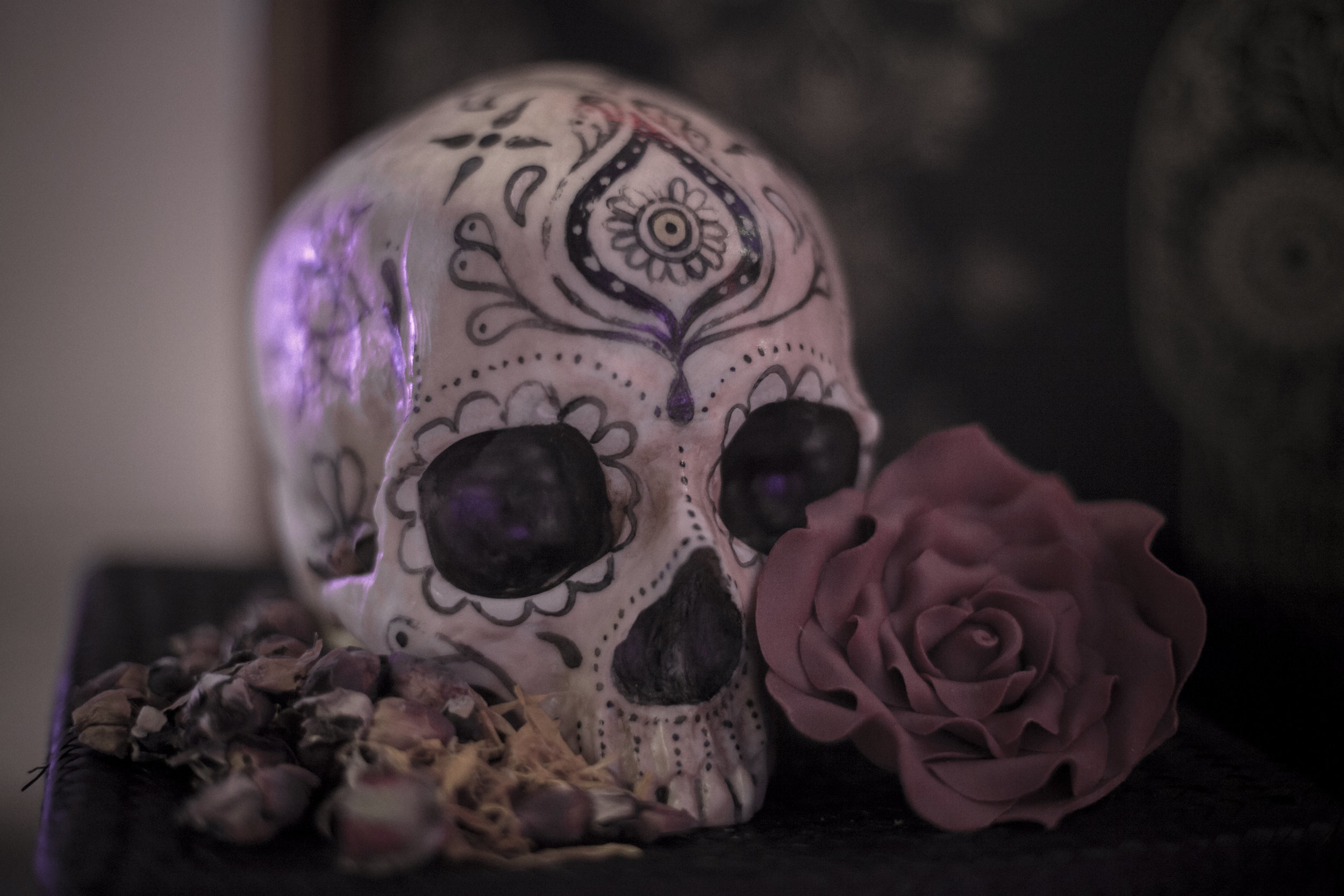 1-The Calavera Cabinet - AVM Curiosities in collaboration with Conjurer's Kitchen and Anatomy Boutique - Photo Reme Campos (10) hi-res.jpg