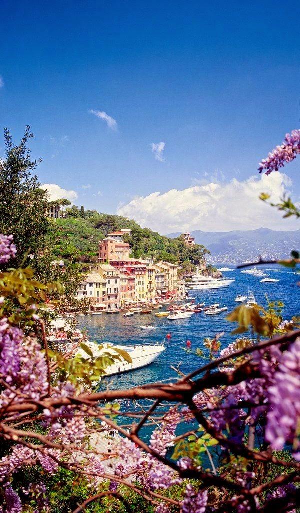 Genoa, Italy (image  from )
