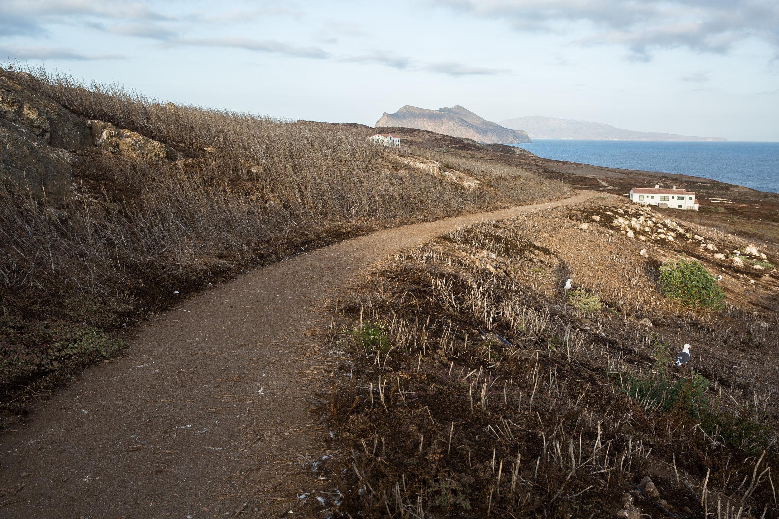 20170916-Anacapa Island REVO-14796.jpg