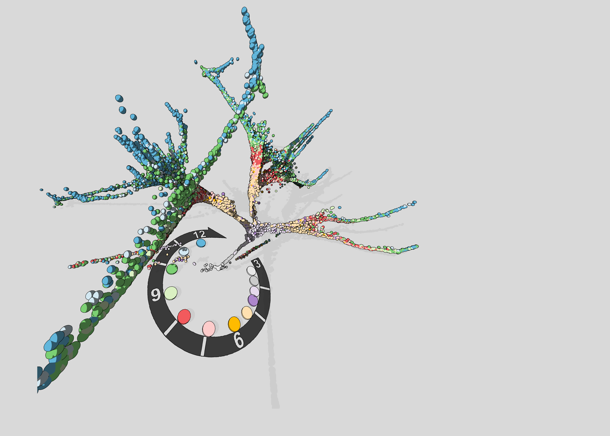 tree_18_w.png