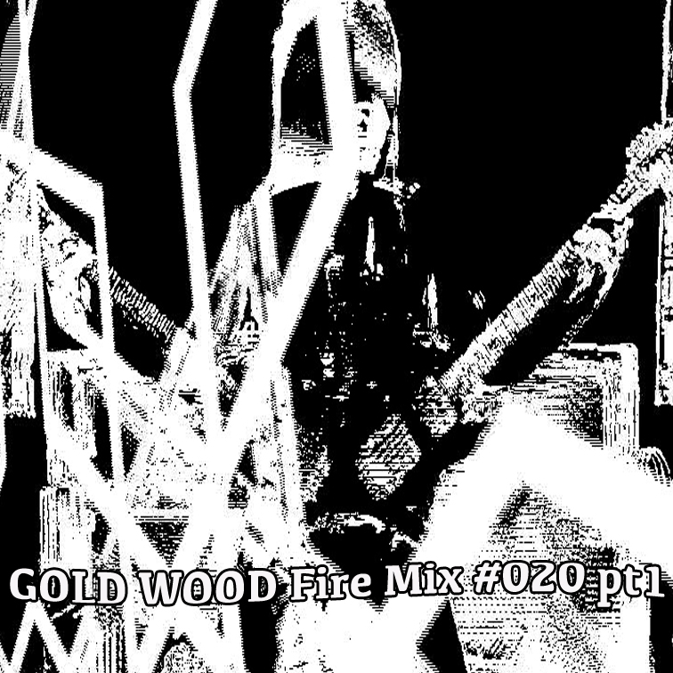GOLD WOOD Radio Fire Mix #020 %22Double Dub Dare You Mix%22pt1.jpg