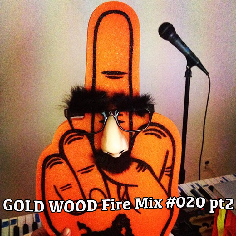 GOLD WOOD Radio Fire Mix #020 %22Double Dub Dare You Mix%22pt2.jpg