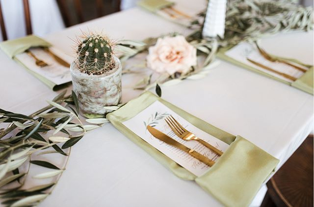 @jordanmitchellphoto  Just looking back through these photos from January, Jordan did such a great job, they are so beautiful!  I love the little cacti within the eucalyptus garland, so unique and quirky. The gold silverware gives a perfect pop of color and goes so well with the light green napkins. This is probably my favorite #tableset to date. It's just so colorful and fun!  @thorn_floral_studio . . . #houstonwedding #houston #houstonweddingplanning #houstonweddingplanner #bouquet #weddingflowers #floral #boutonniere #houstonflorist #houstonphotography #houstonphotographer #houstonweddingphotography #houstonweddingphotographer