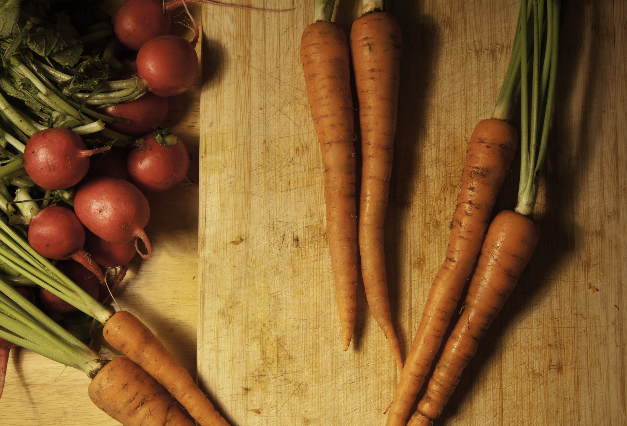 Carrots and radishes.jpg