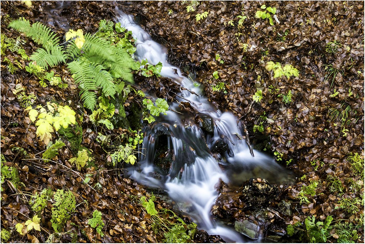Ручьи Тосканы (f18, 4 сек)