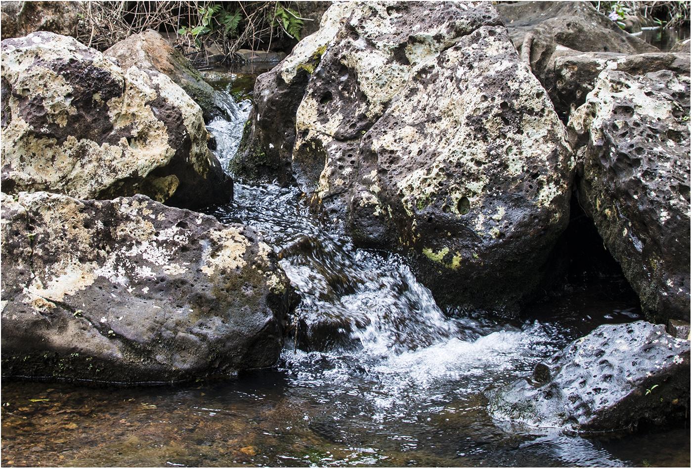 Вода замерзла и глазу это не очень приятно (f5, 1/125 сек)