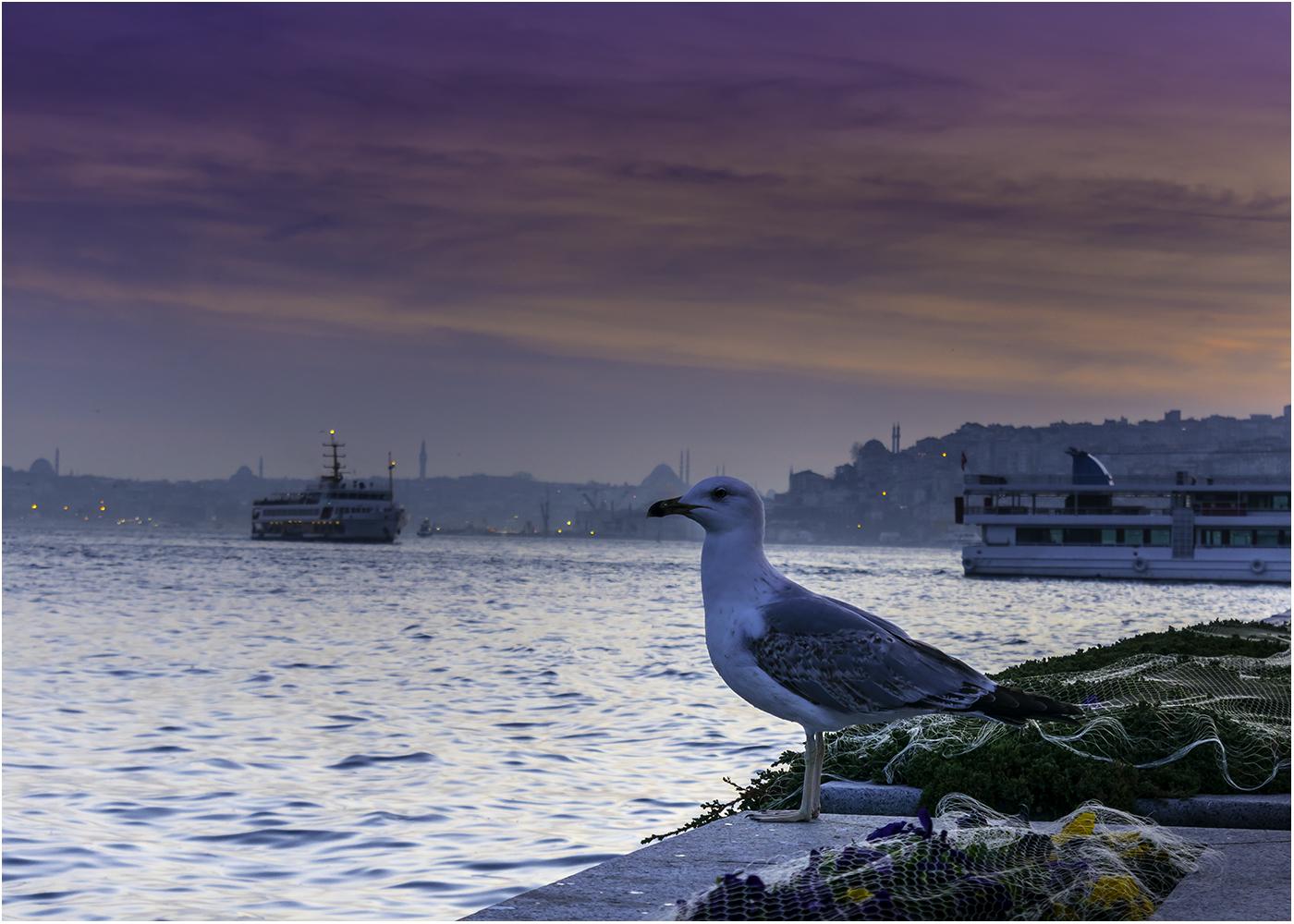 Istanbul_0945.jpg