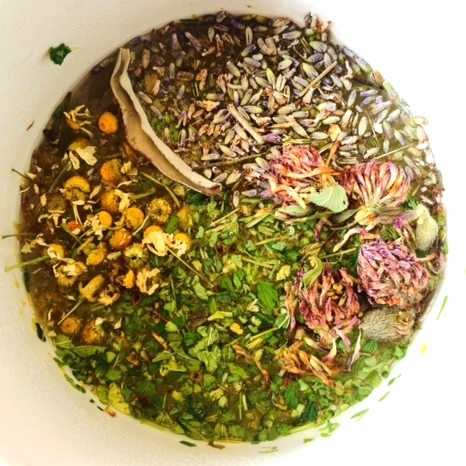 Clockwise from the top-- lavender, red clover, skullcap, chamomile, sage.