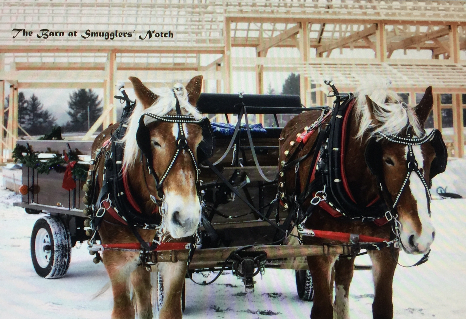 Authentic Amish Sleigh & Wagon Rides at The Barn at Smugglers' Notch