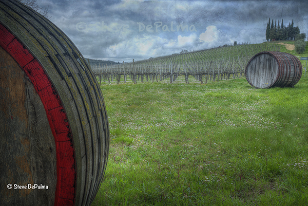 A vineyard in the rolling hills near in our former home of Tuscany, Italy. Artwork by Steve DePalma
