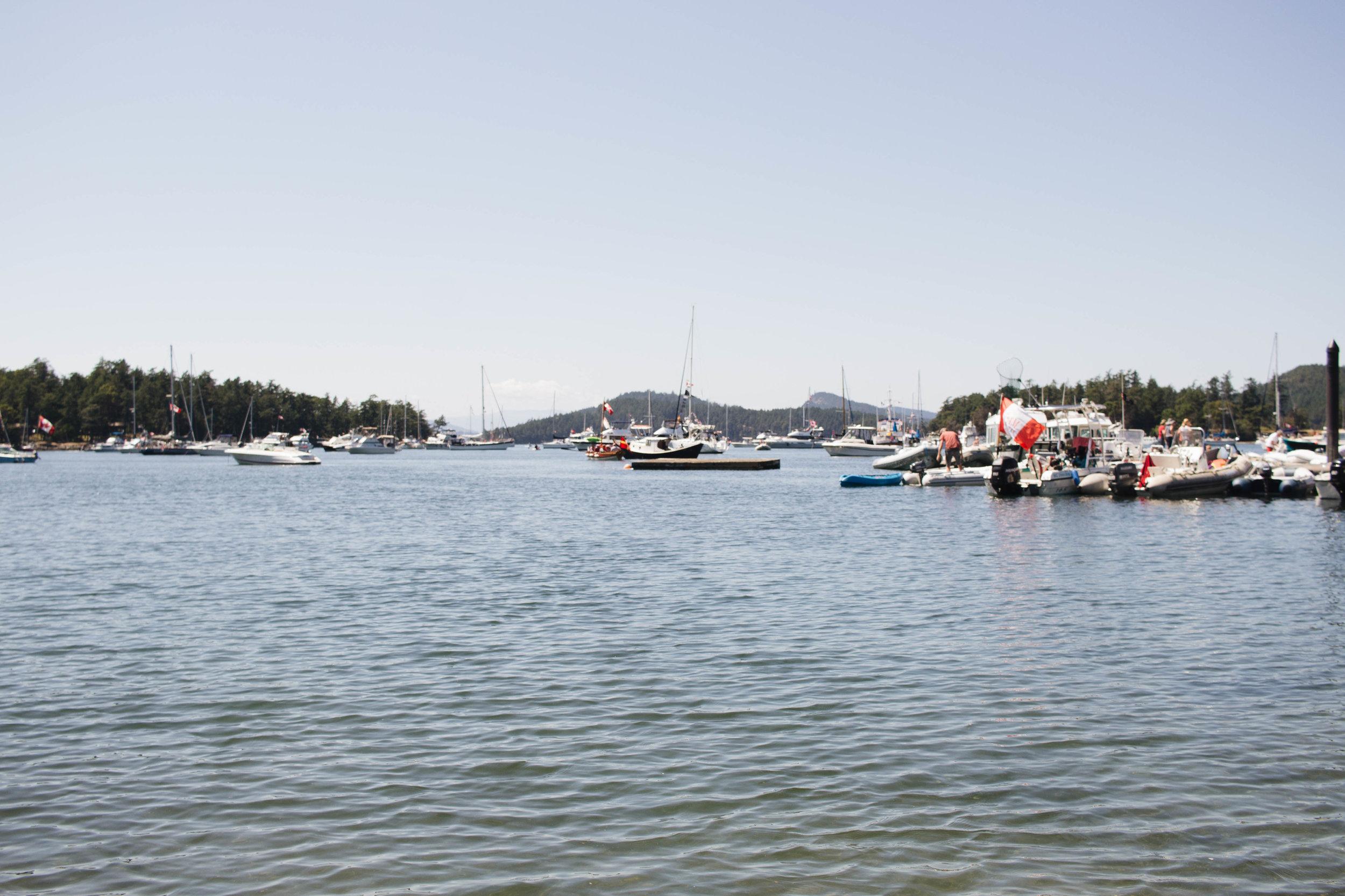Saturna harbour