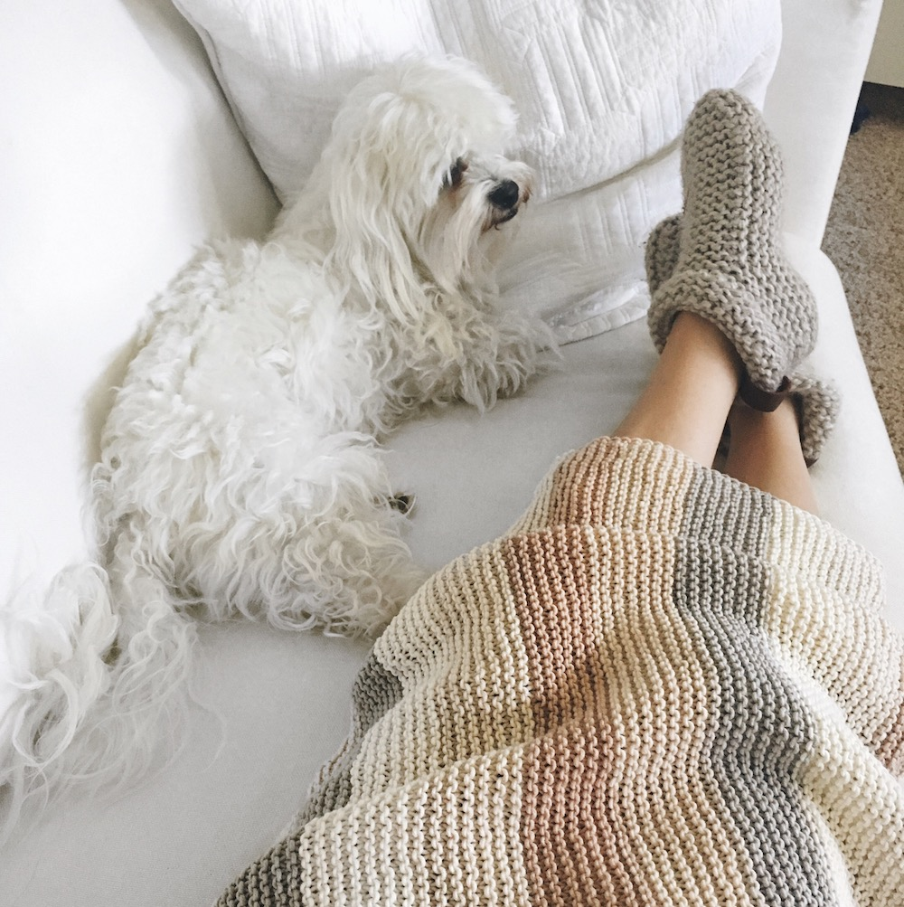 neutral knitted baby blanket and coton de tulear