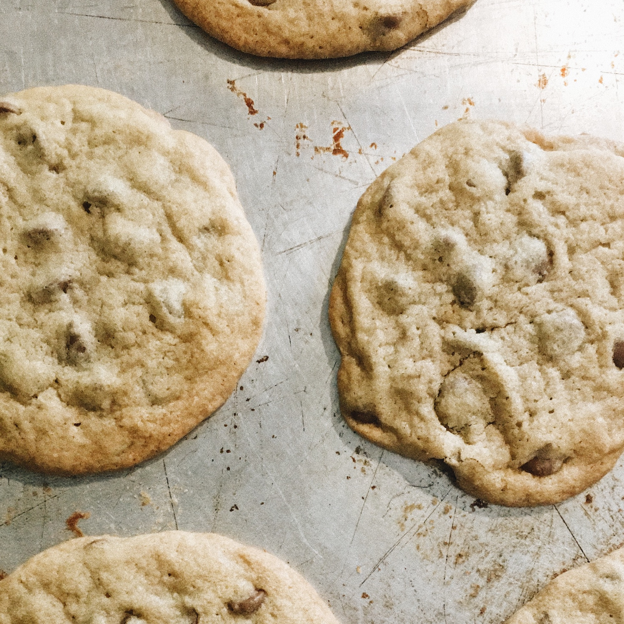 Cashmere + Plaid Blog | TGIF July 20 | Homemade chocolate chip cookies on a Tuesday night
