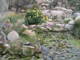 boulder gardens
