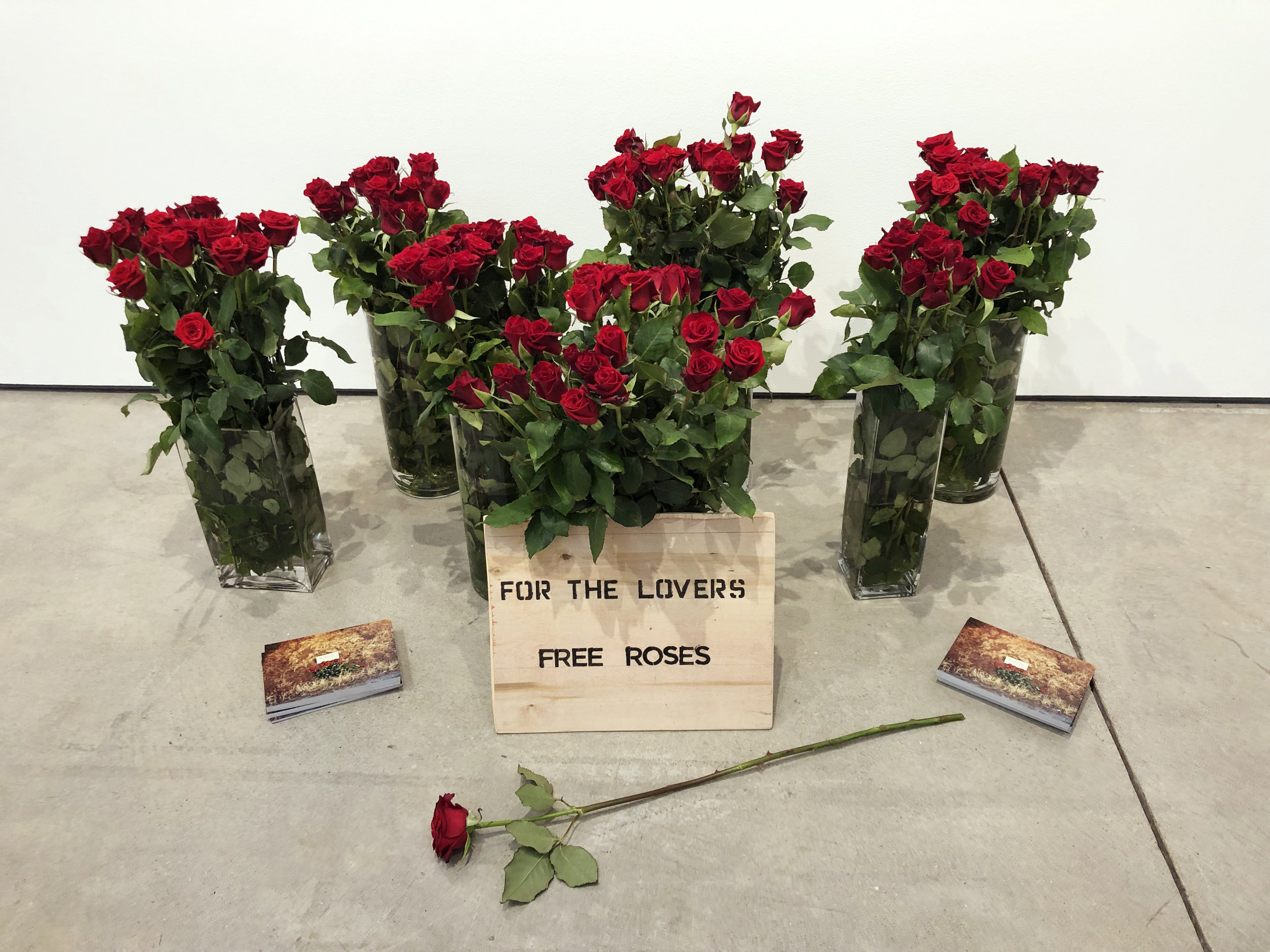 "Ida Islas - ""For the Lovers"" Installation"