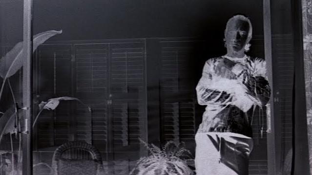 A 'negative colour sequence' from Guadagnino's favourite film, Martin Scorsese's  Cape Fear