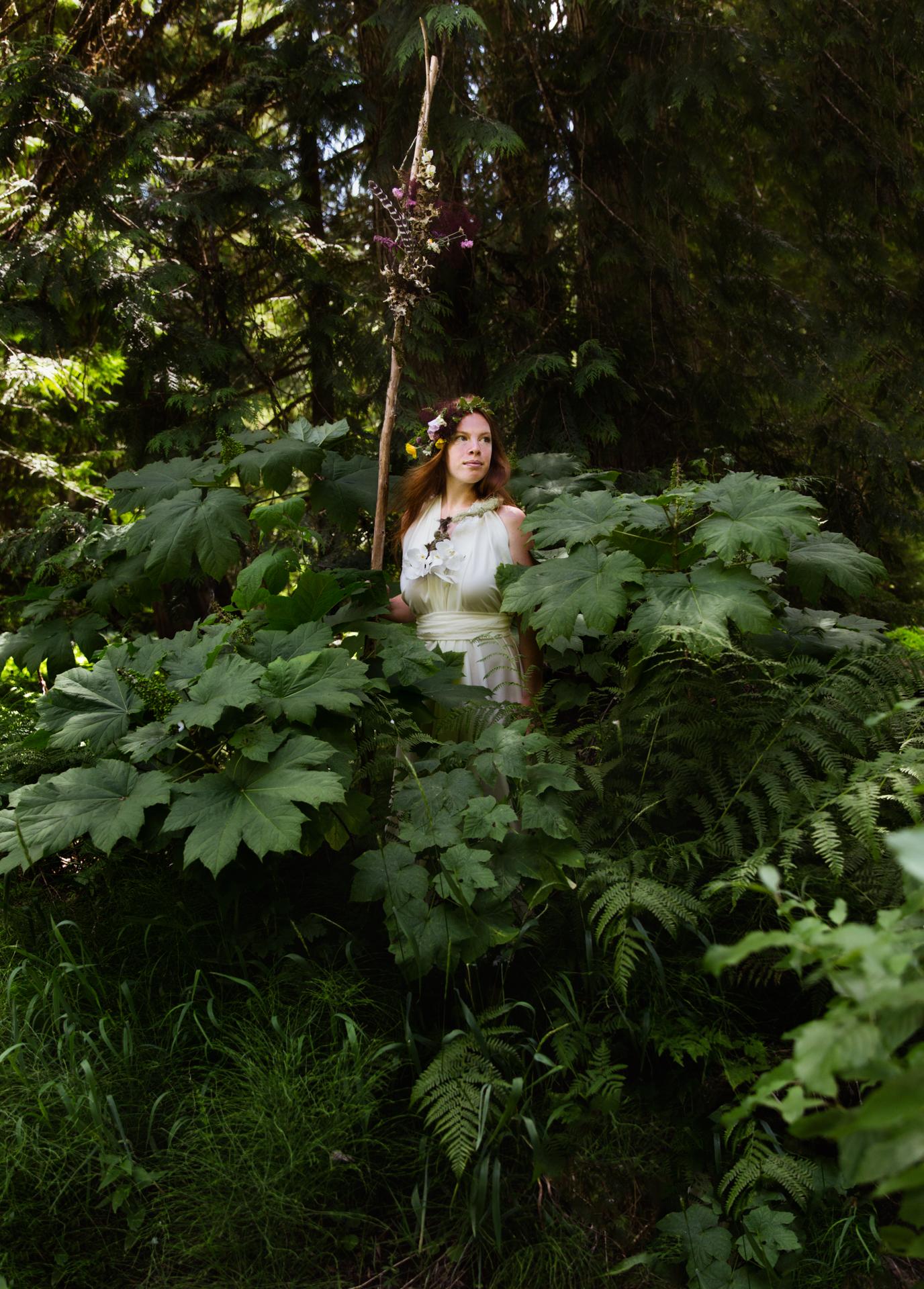 Fairys_ode_MT--2.jpg
