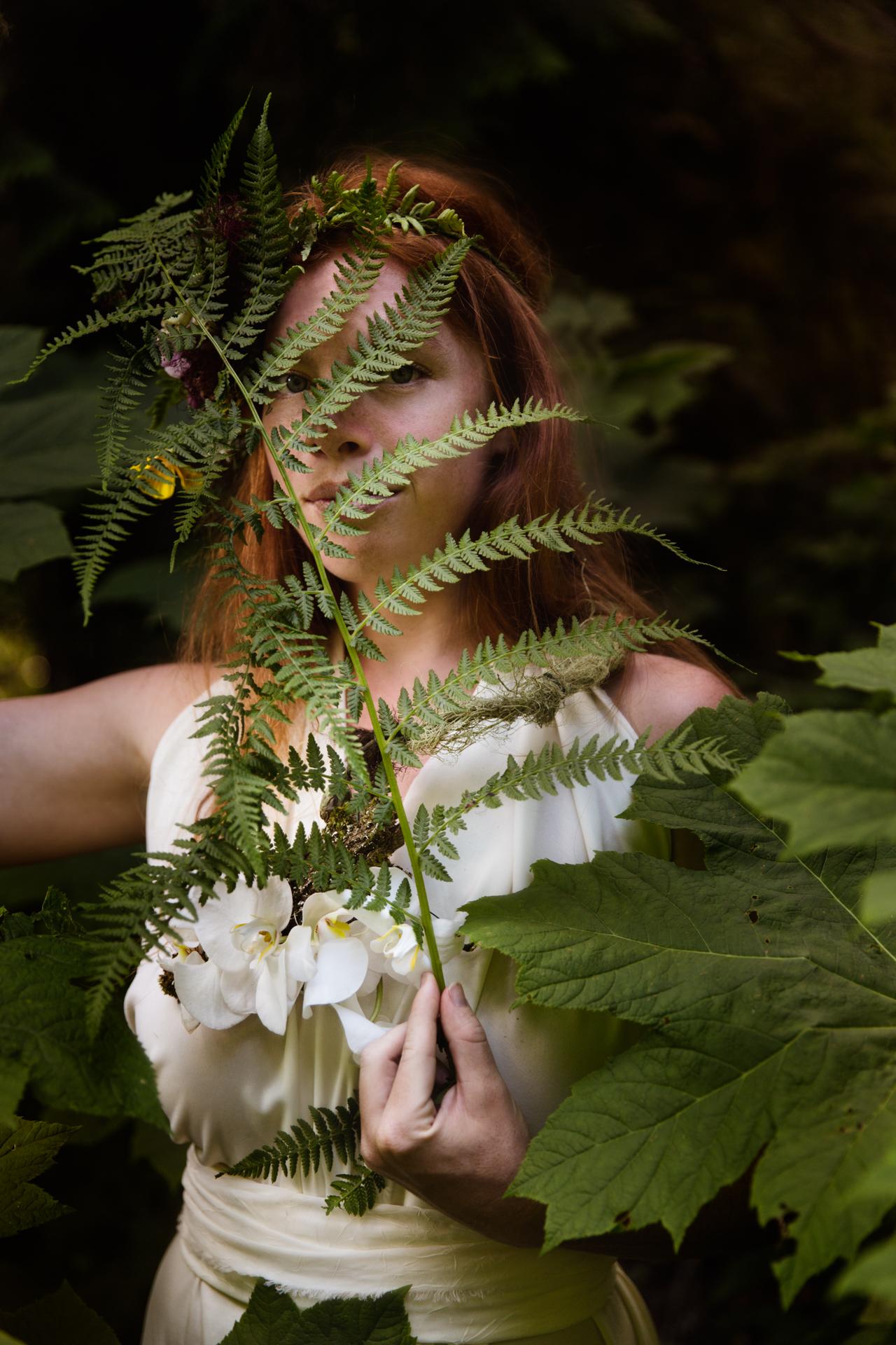 Fairys_ode_MT--3.jpg