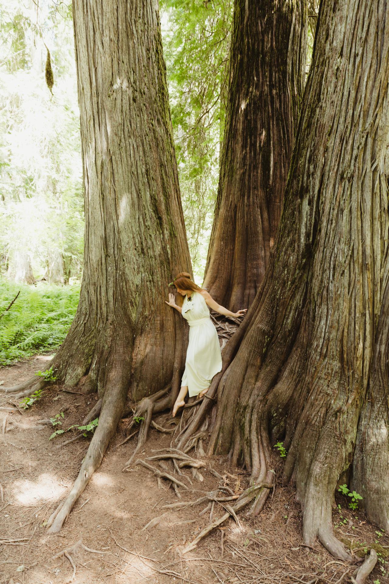 Fairys_ode_MT-6883.jpg