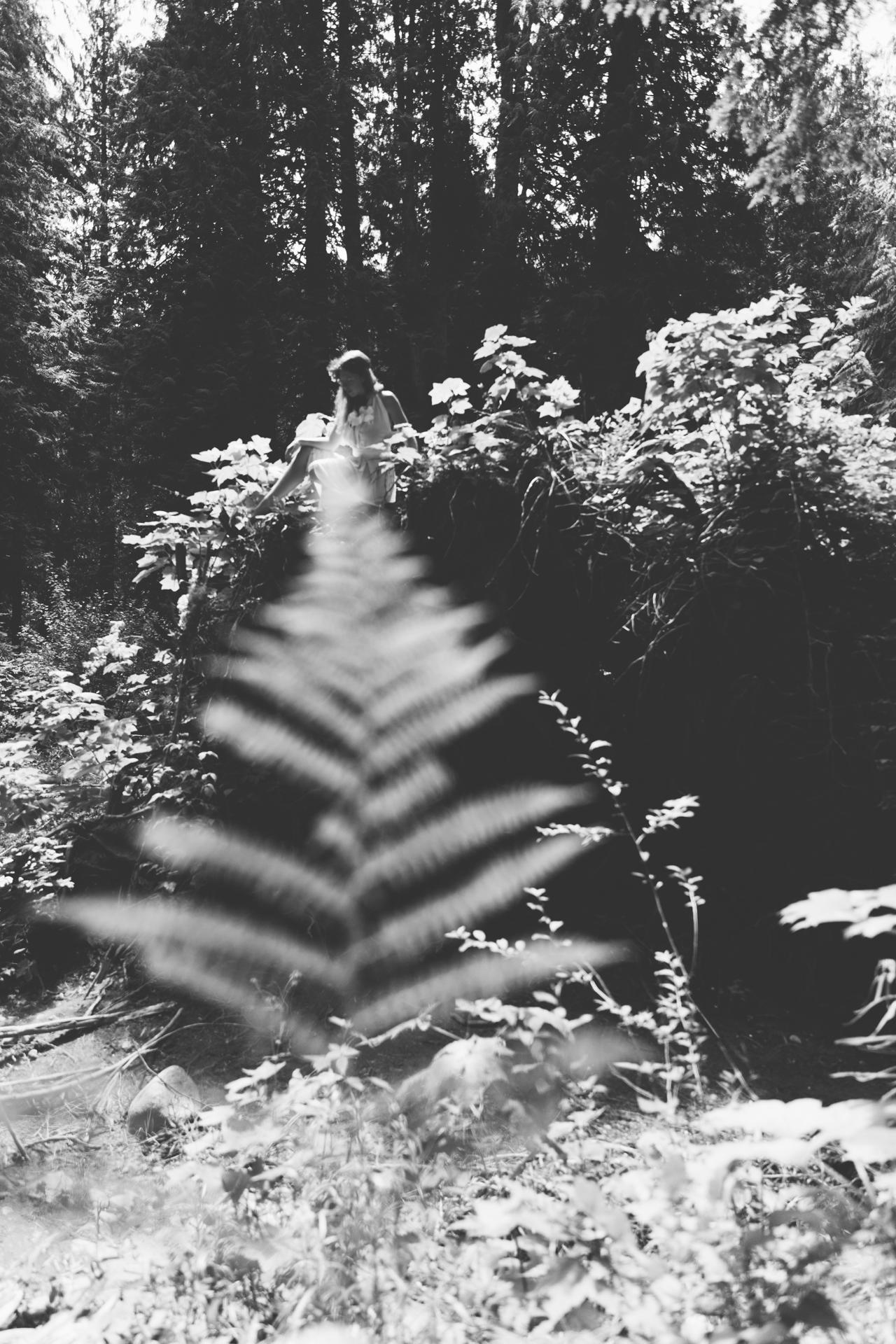 Fairys_ode_MT-6981.jpg