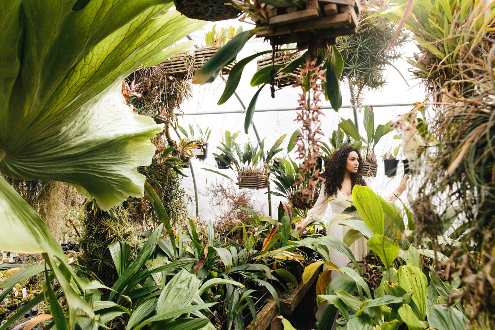 green_garden_goddess.jpg