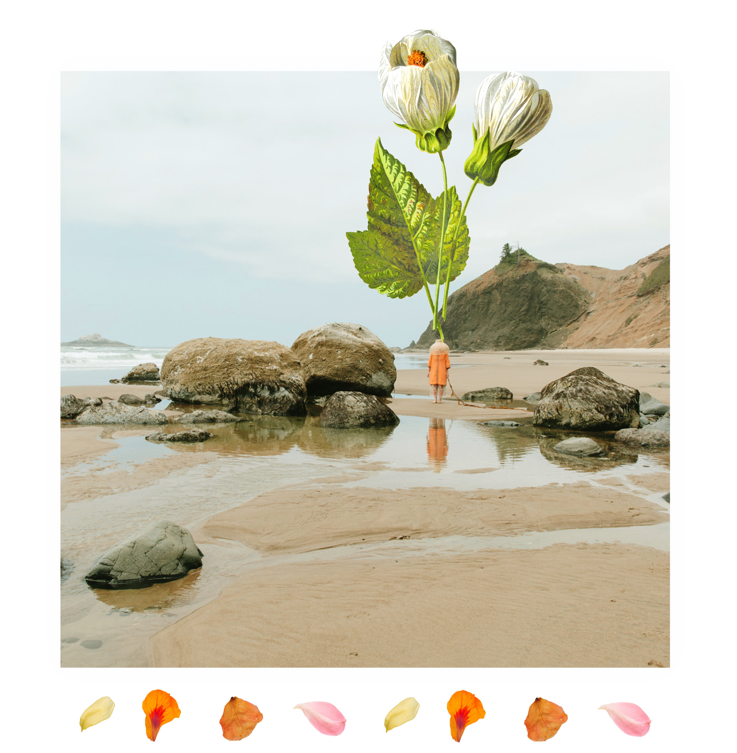Beachcollage.jpg