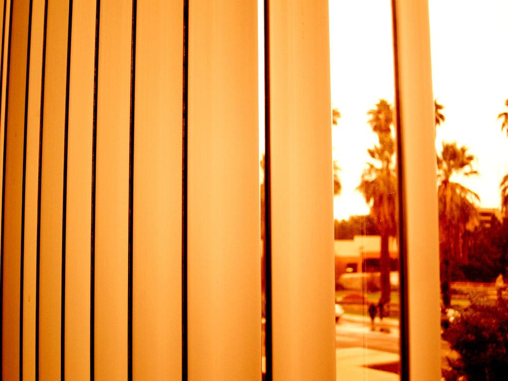 orange palm springs.jpg