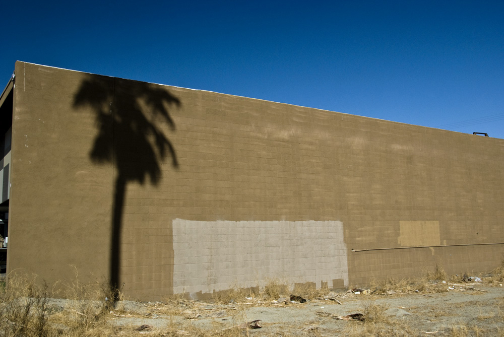 palm on wall.jpg