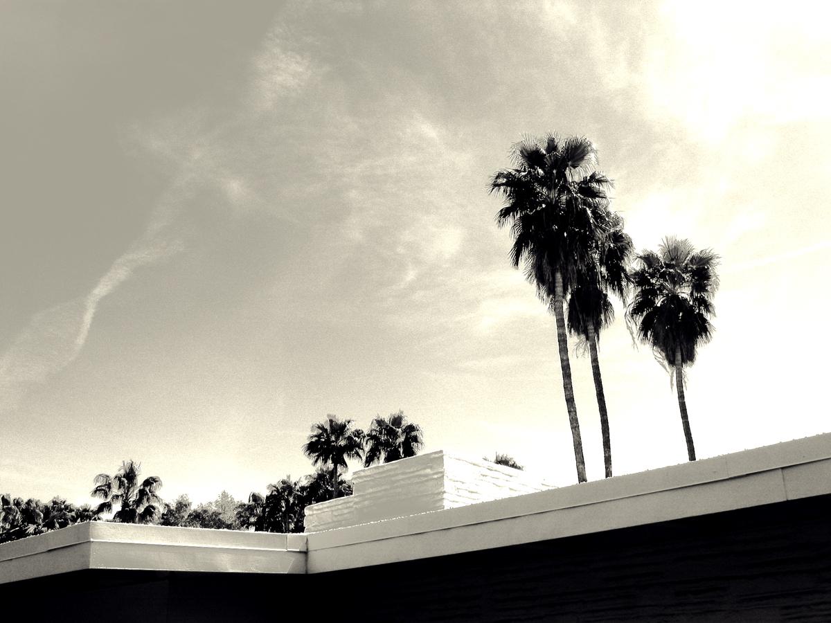 bw-palmsprings-house_1.jpg