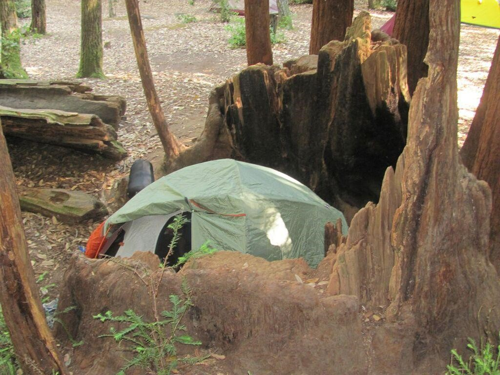 Bring your own TENT There are predetermined campsites with fire rings and picnic tables.