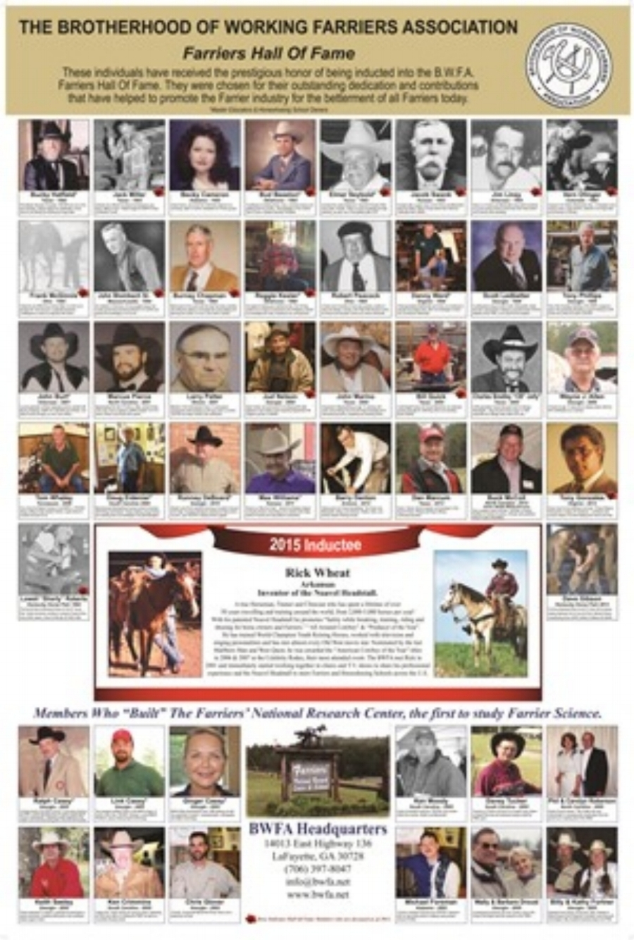 2015 Hall of Fame poster jpeg.jpg