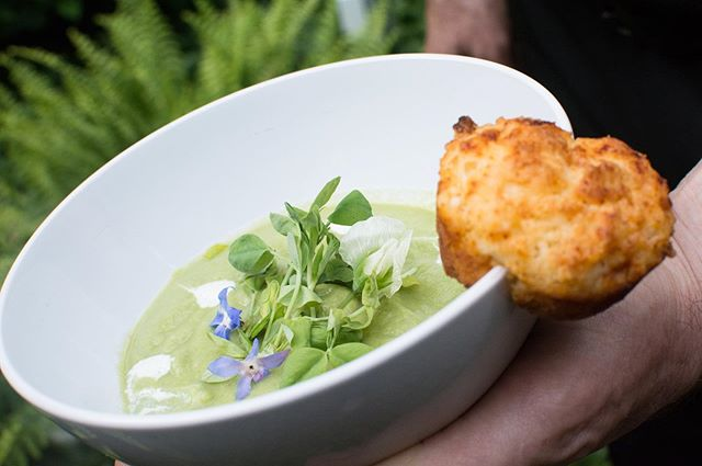 TO TABLE.  Second course: spring pea soup, with a hint of mint, pea shoots and tarragon cream. #farmtotable . . . #SevenHarvests #7H #healthyfood #healthyliving #farmtotable #local #gourmet #philadelphia #phillyfoodie #finedining #support #community #ministry #cityteamchester @cityteamchester 📸 @erikahorlings