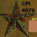 cpi4079.jpg
