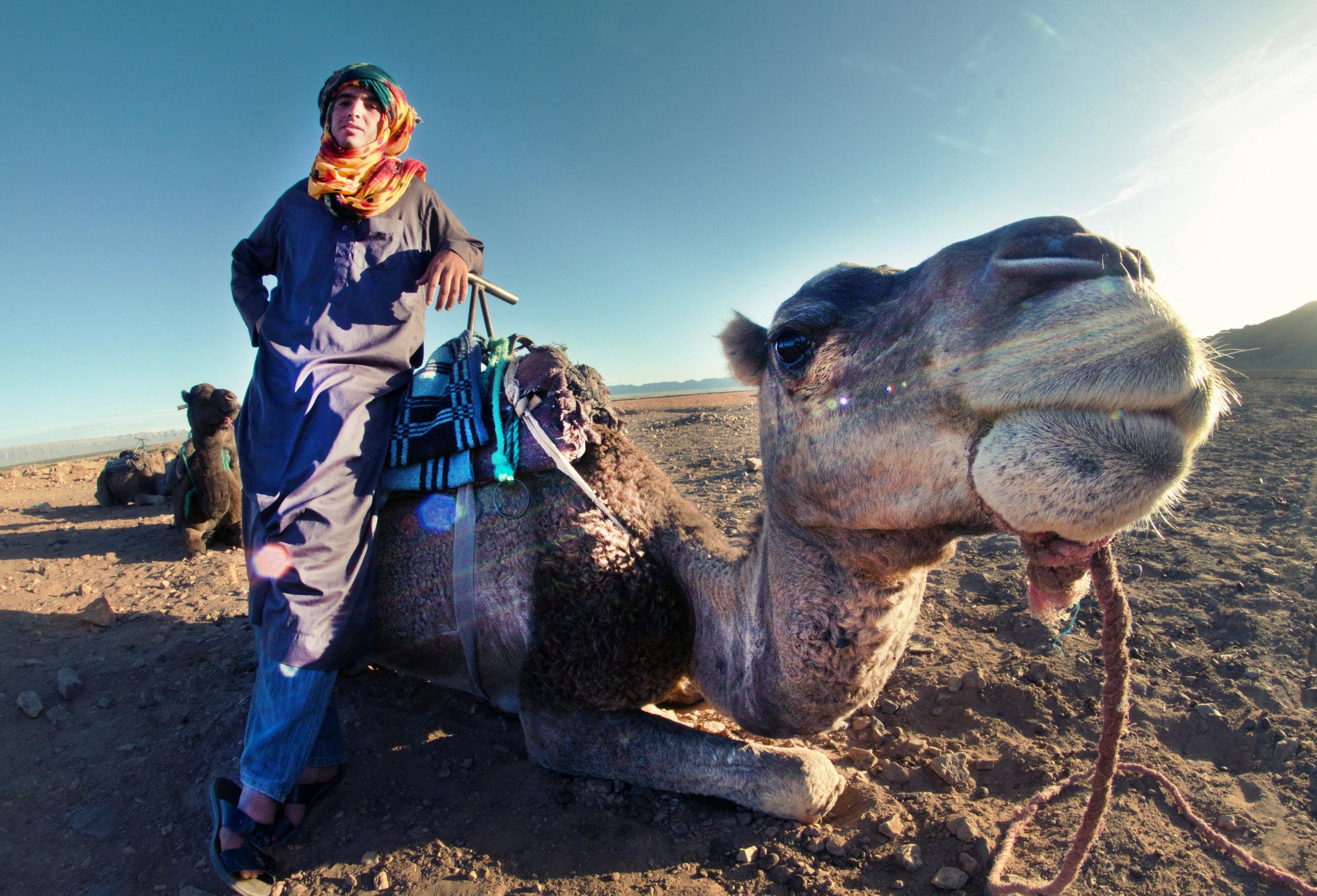 Morocco - Berber & Camel.jpg