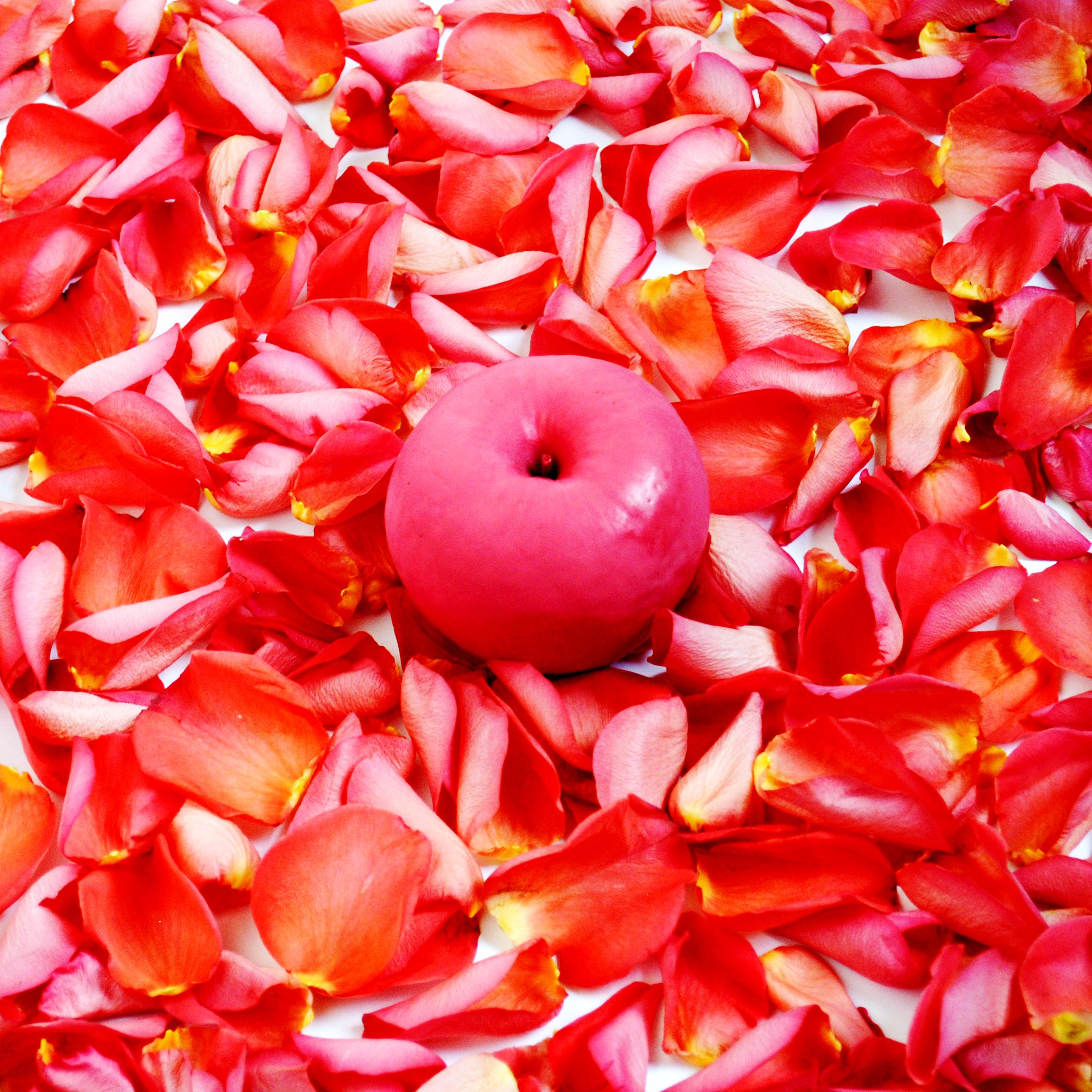 SaraChaudhuri-ApplesAmericanBeauty