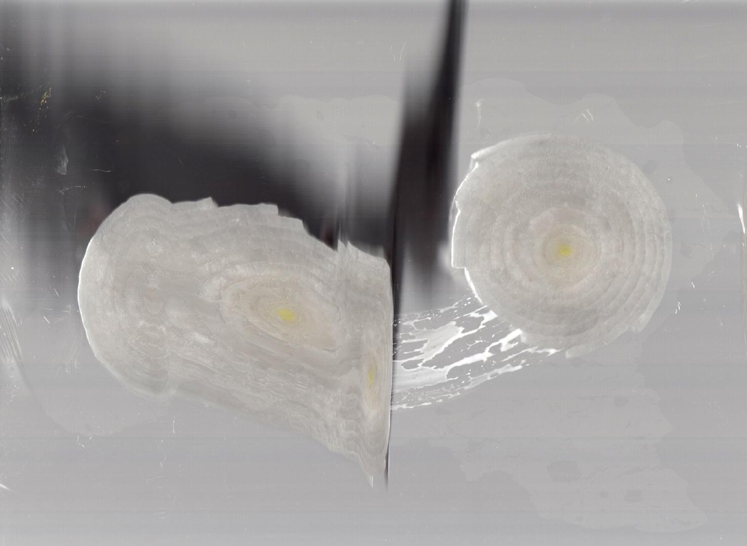 sara chaudhuri-onion scan