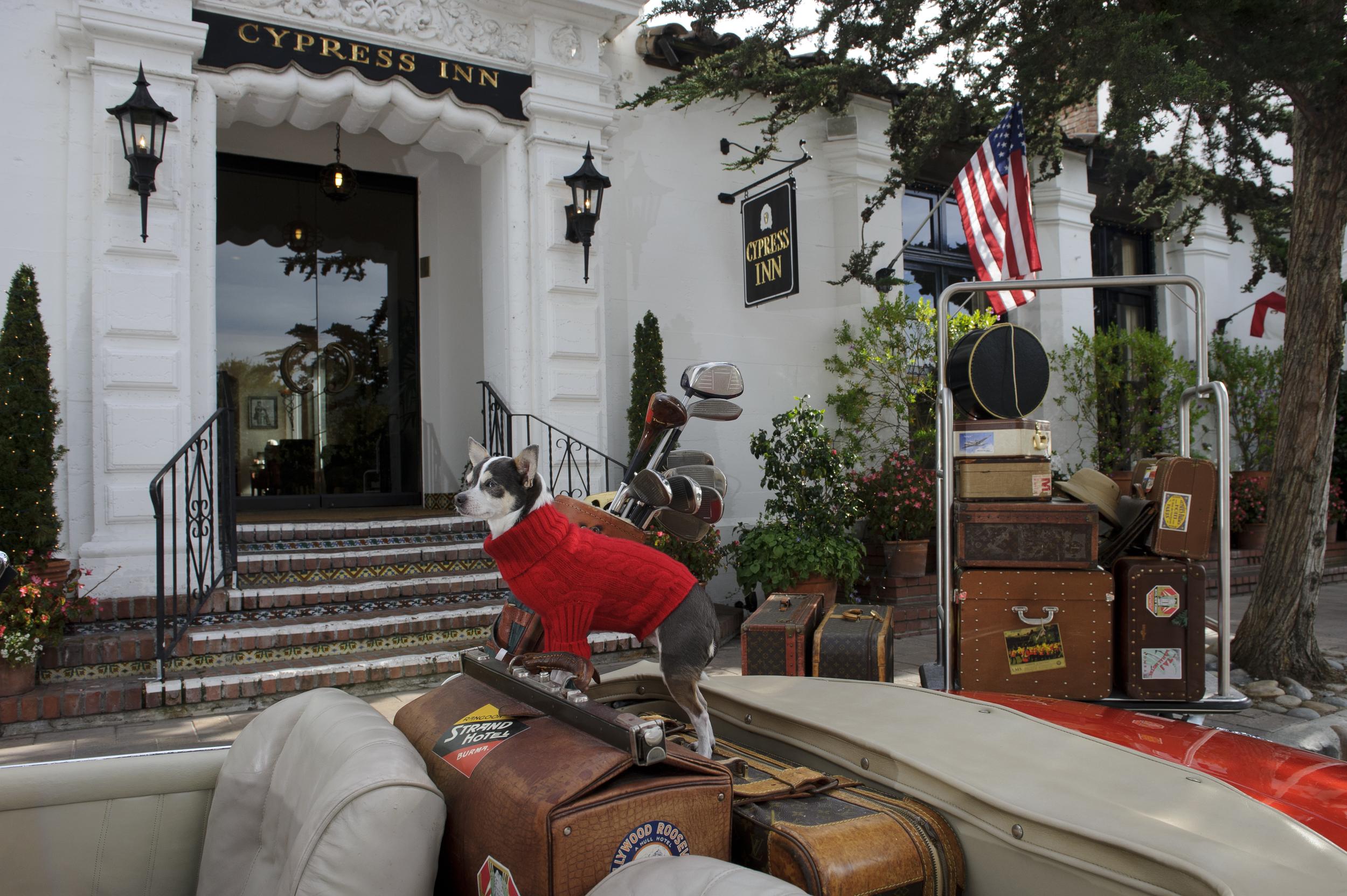 CarmelSadie-Red-Sweater-Louis-luggage-front-door.jpg