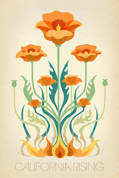 wildfire-poppies_web2.jpg