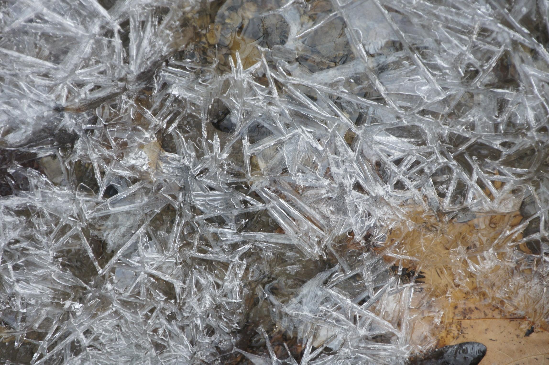 Ice on Creek