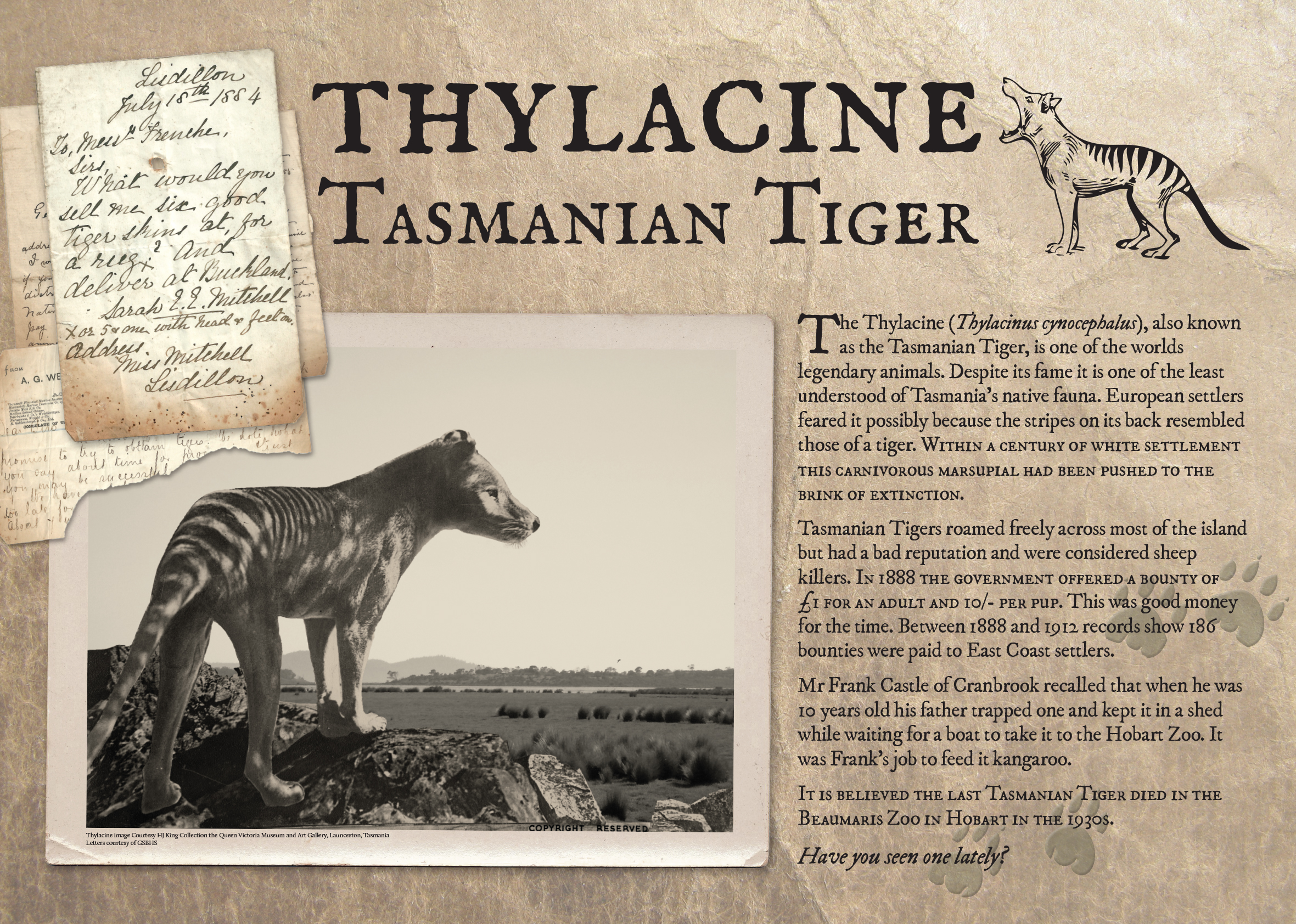Thylacine_poster_FINAL.jpg