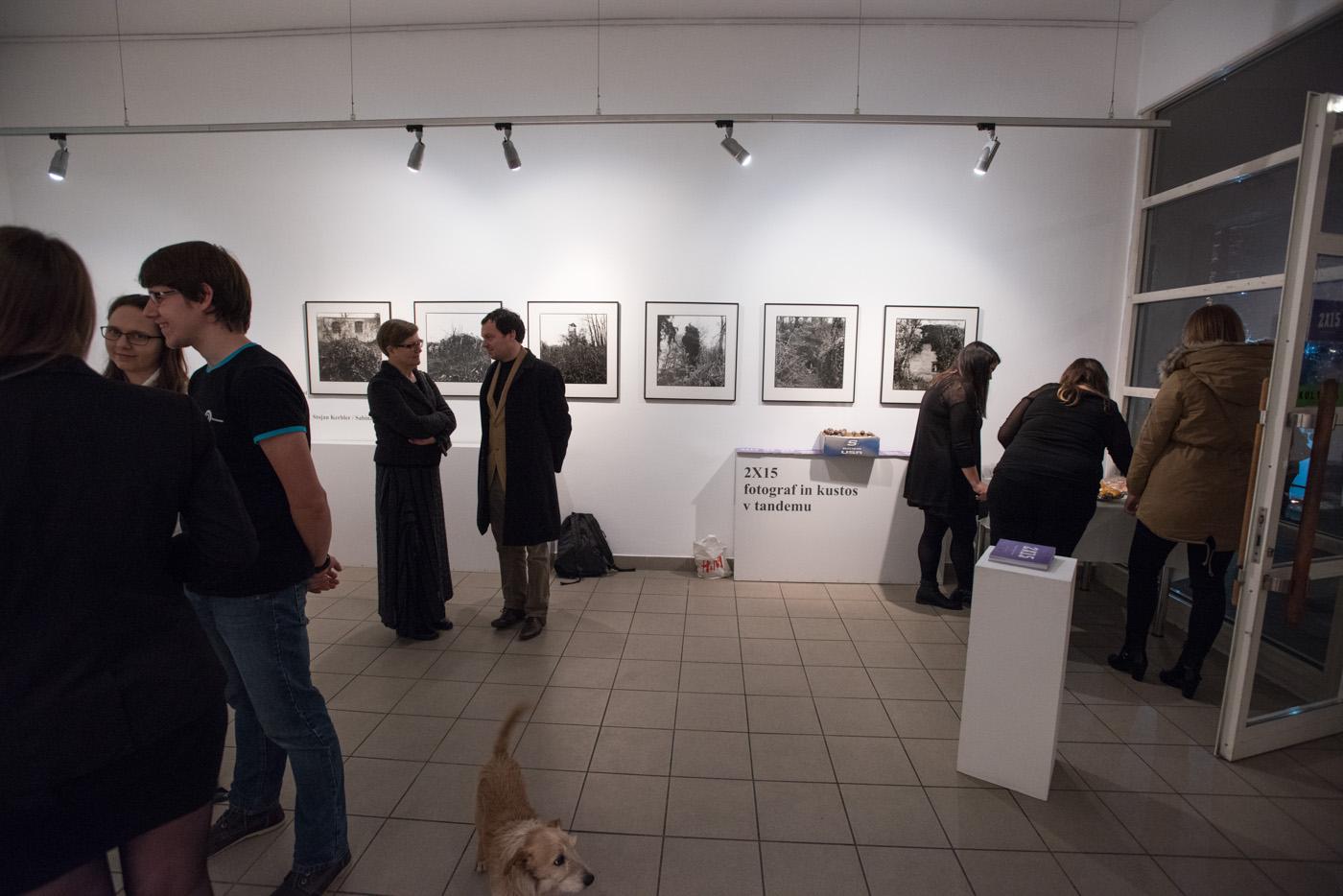 fotograf in kustus-MediaNox-Maribor-16.jpg
