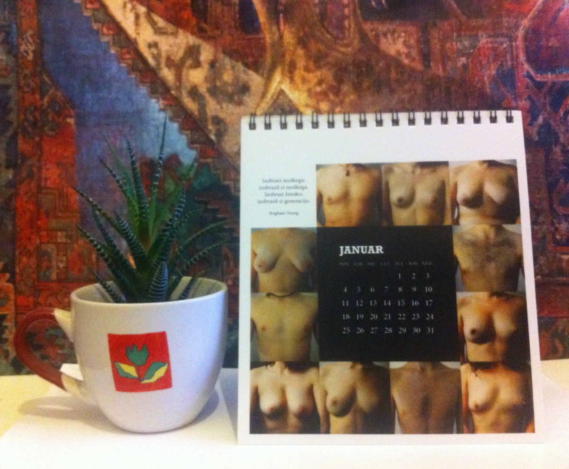 ZIZ koledar 2016