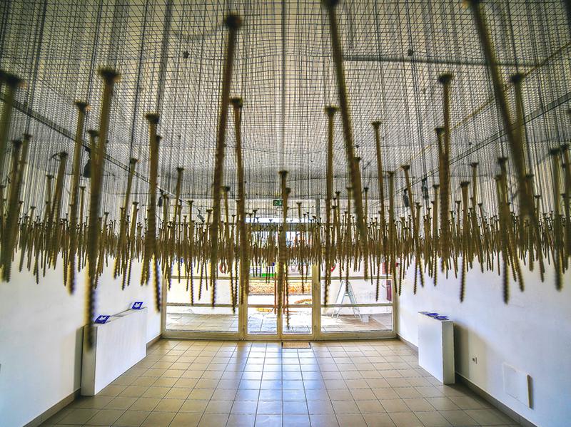 Razstave - Aktualni in stalni razstavni projekti v mestnih galerijah…