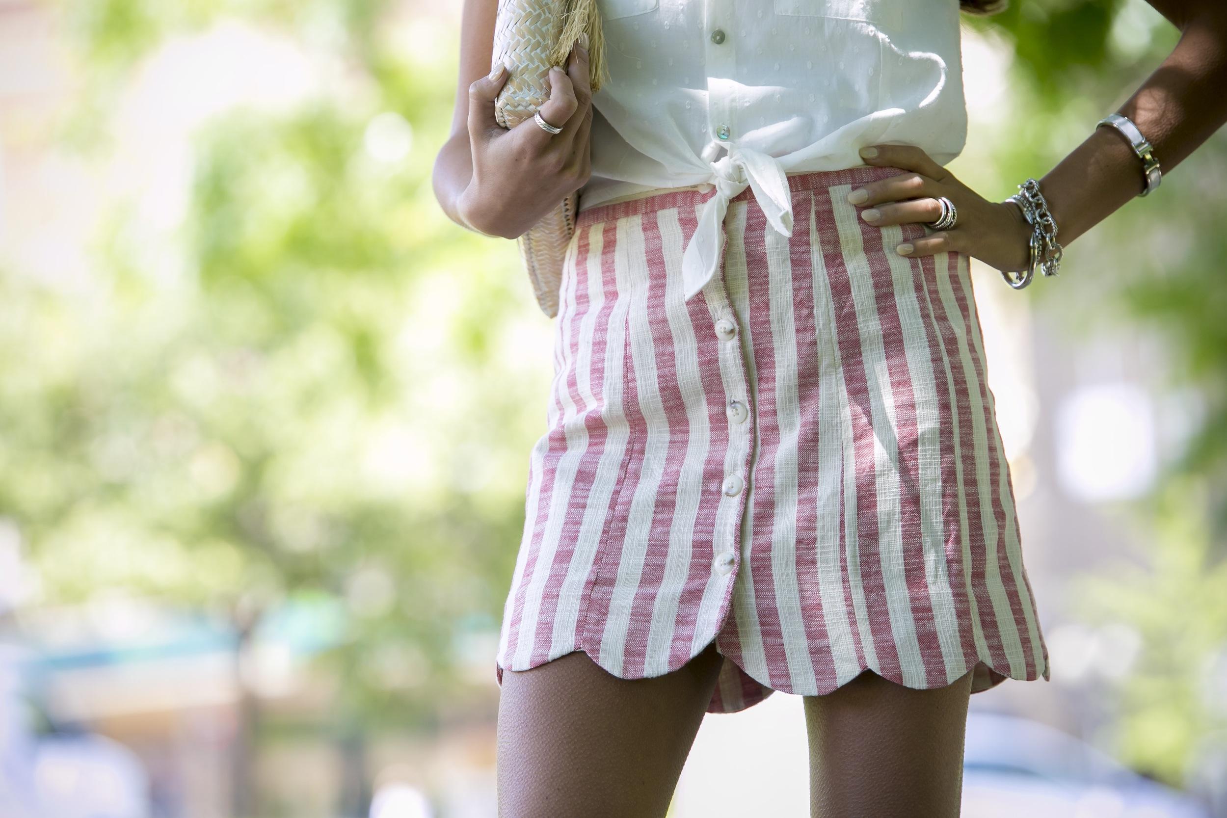 Skirt:Forever21( similar ) Top:H&M( similar )    Dino Petrocelli Photography