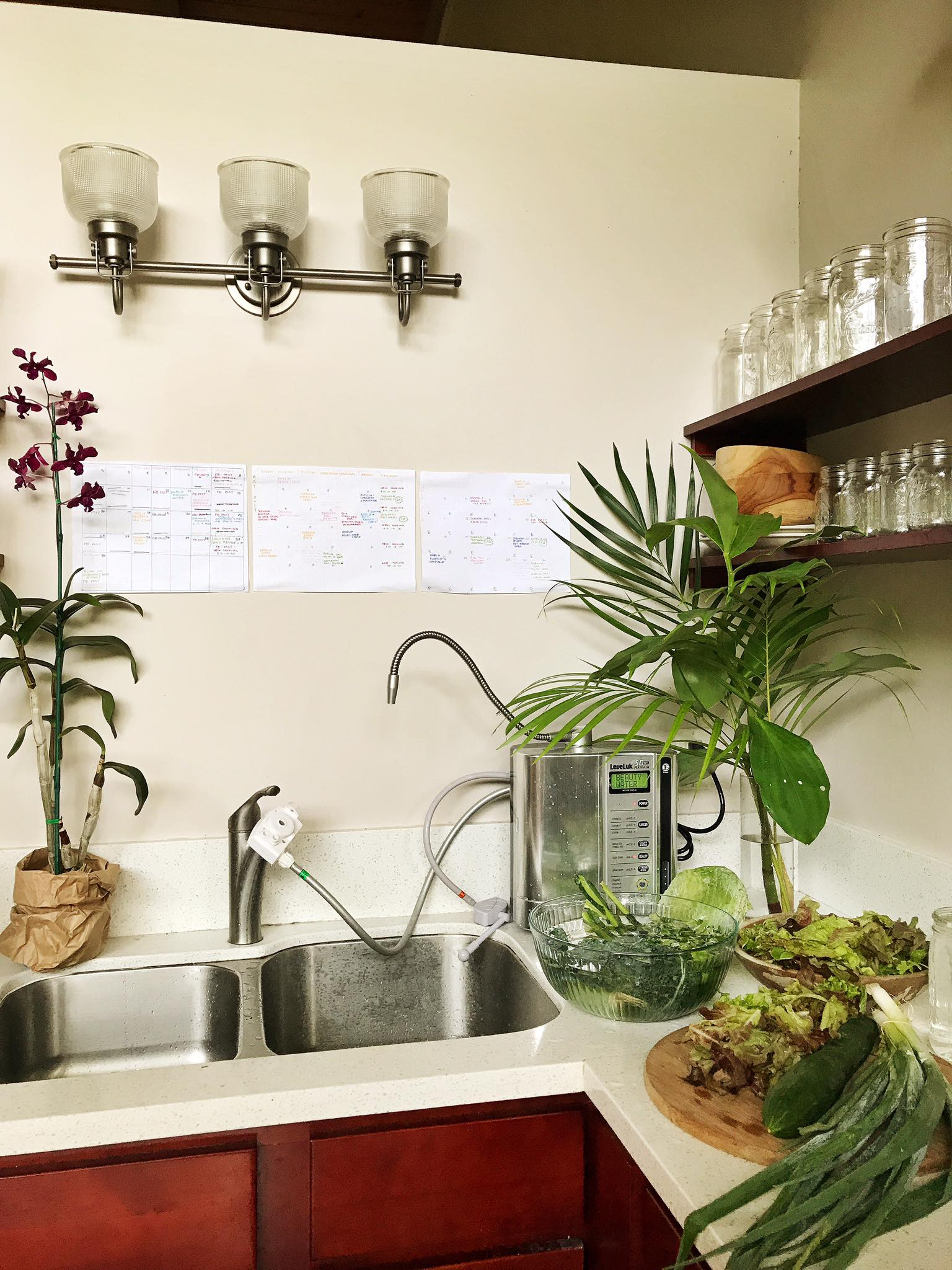 Here is an image of the accoutabiloty clanders that currently reside in our kitchen here on Kauai. Directly above the sink, where we spend most of our time in the kitchen filling up bottles from the Kangen machine and washing/preparing our beautiful fruits and vegetables. I used multi-colored pens and markers to differentiate between personal/physical/financial etc. goals