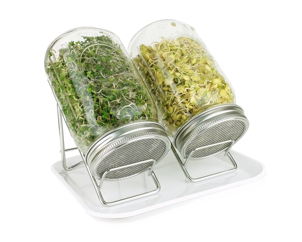 DELUXE SPROUTING KIT - GLASS + STAINLESS STEEL