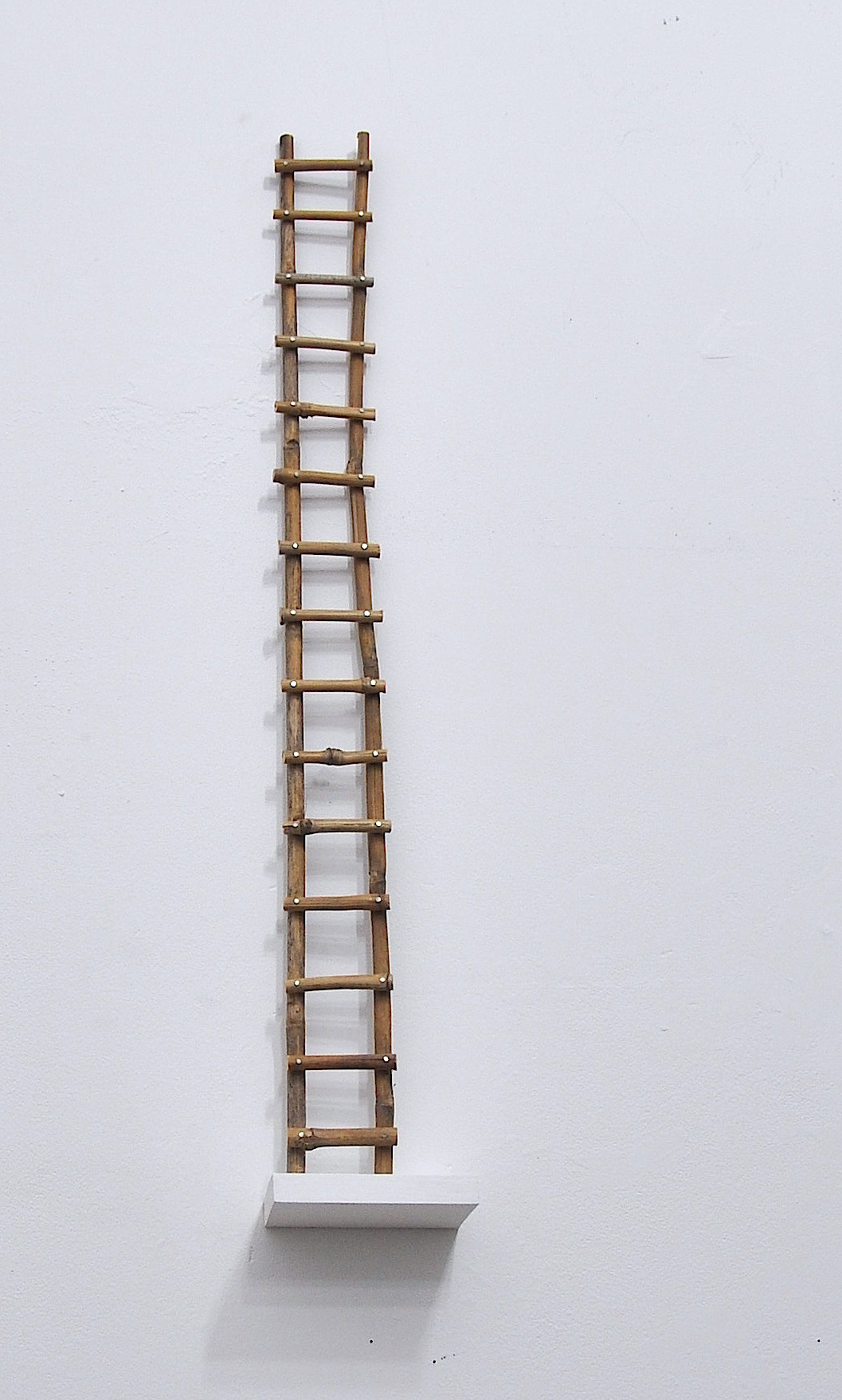 bamboo ladder.jpg