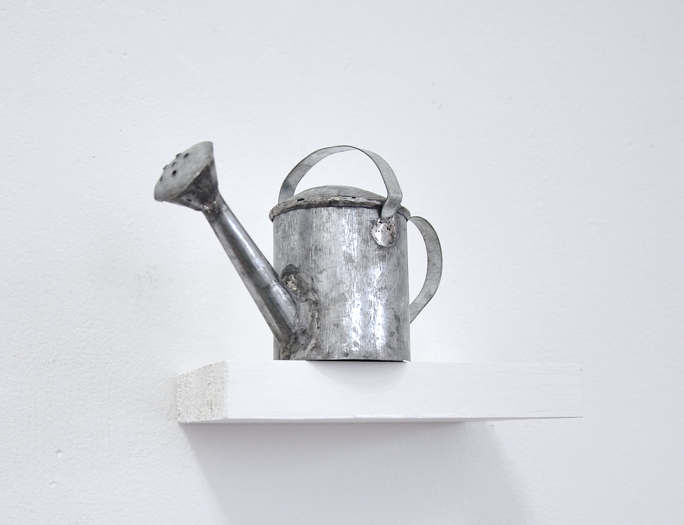 toy watering can.jpg